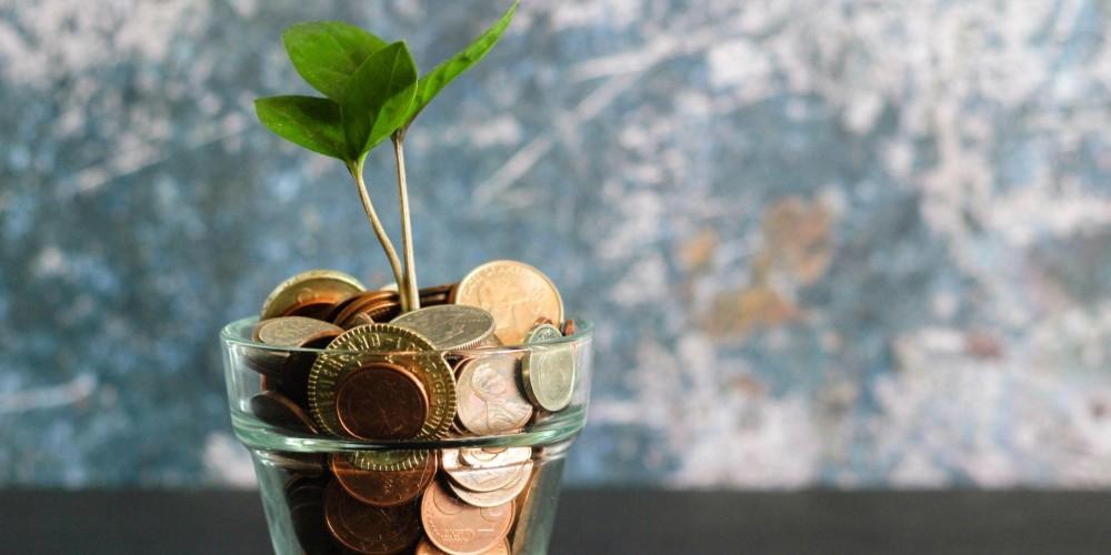 ¿Cómo invertir mi capital? ¿Es buena idea invertirlo todo?