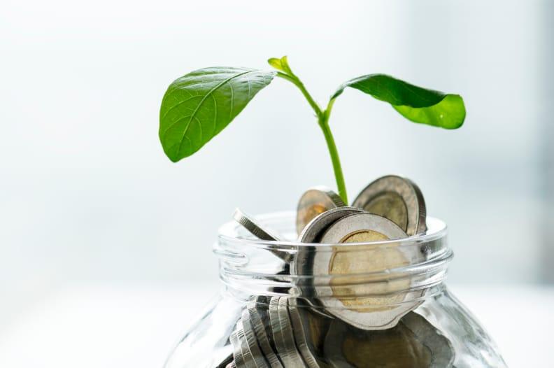 Dónde invertir los ahorros: mejores opciones